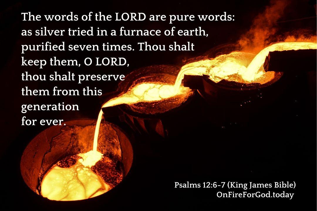 Psalms 12:6-7