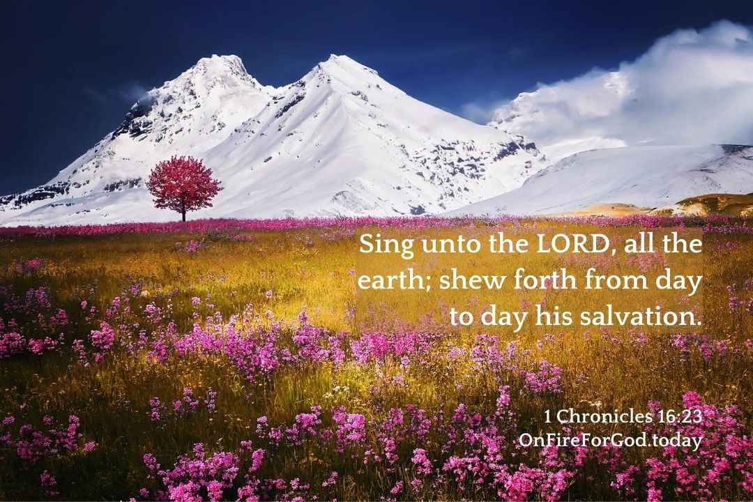 1 Chronicles 16:23