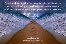 Exodus 14:22