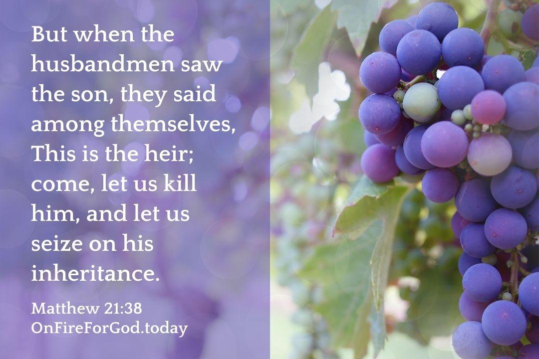 Matthew 21:38