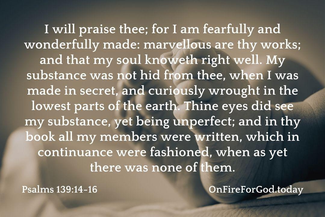 Psalms 139:14-16
