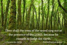 1 Chronicles 16:33