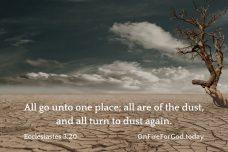 Ecclesiastes 3:20