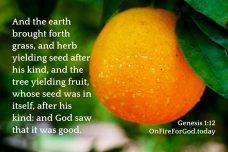 Genesis 1:12