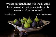 Proverbs 27:18