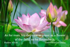 Psalms 103:15