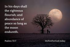 Psalms 72:7